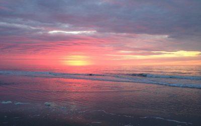Case Study | Hilton Head Island Visitors & Convention Bureau (SC)